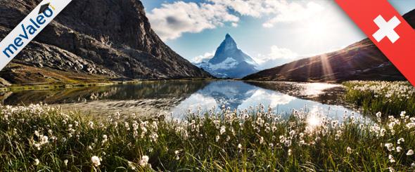 mevaleo Schweiz