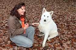 Berufsbegleitende Weiterbildungen für Tierpfleger